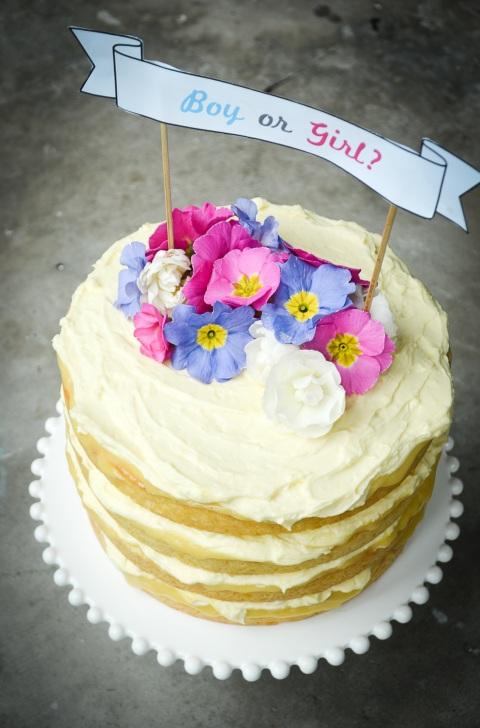 Lemon Coconut Syrup Cake_Baby Reveal Cake-01